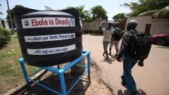 Над 60% от случаите на ебола по света разпространени от 3% от заразените