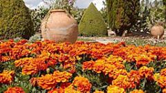 Дворецът на Балчик се сдоби с билкова градина