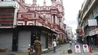 Опозиционният кандидат Раджапакса спечели президентските избори в Шри Ланка