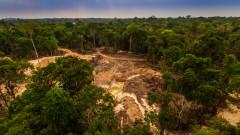 Следваща пандемия? Обезлесяването на Амазонската джунгла може да предизвика нови болести