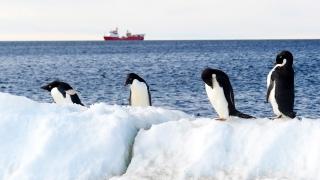 Ледът на Антарктида намалява