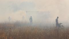 Три пожара тръгнаха едновременно в Димитровградско