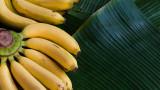 Бананите, обелките им и какво още можем да направим с тях