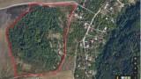 Безвъзмездно да прехвърлят на София 85 дка гора до Западния парк, иска Тома Белев