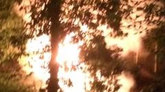 1000 дка гори изгоряха при пожар около границата със Северна Македония