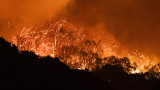 Горските пожари в Калифорния изгориха рекордна площ