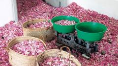 Производителят на лекарства Dr. Theiss може да използва българско розово масло