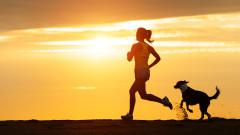 Спорт с кучето