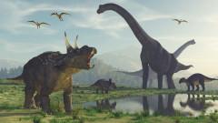 Как динозаврите стават господари на Земята