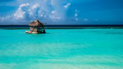 Малдиви, 4*+, от 4556 лева