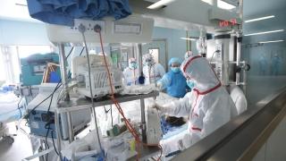 47 починали от птичи грип в Китай през март