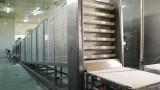 Най-бързо растящата компания за бързо хранене у нас готви 2.7 млн. лв. инвестиция