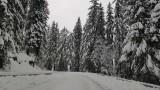 """Снегът затвори и прохода """"Петрохан"""""""