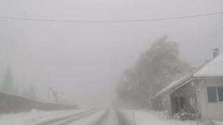 Пътищарите: Падна първият сняг, а Комитова още не е подала оставка