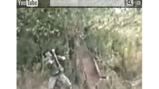 Елен разката ловеца, който го прострелял (видео)