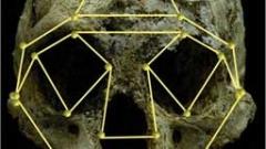 Прародина на Хомо сапиенс е Израел, откриха учени