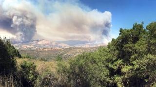 Евакуираните заради пожара в Калифорния се връщат по домовете си