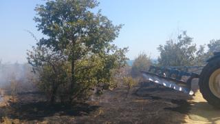 Искат ликвидиране на незаконния къмпинг край Иракли