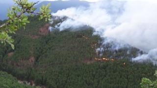 Тежка техника гаси пожара край Хасково