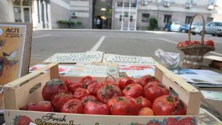 Гнили домати - наградата за държавата за политиката й за децата