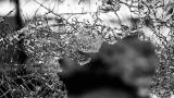 Момче и момиче загинаха при тежка катастрофа между Варна и Бургас