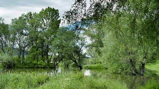 За рязко покачване нивата на реките предупреждава МОСВ