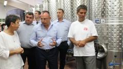 Над 200 хил. т грозде за вино е тазгодишната реколта