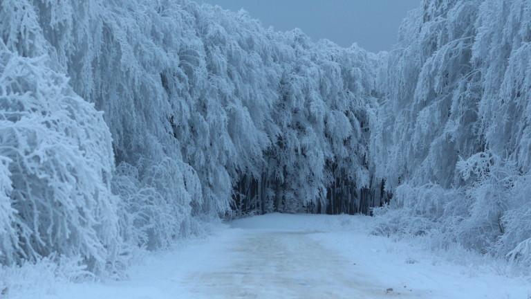 Пътните настилки са мокри, на местата със снеговалеж