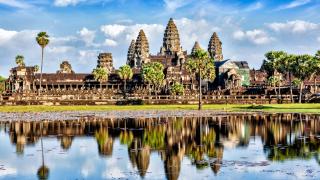 Камбоджа забрани износа на кърма за САЩ