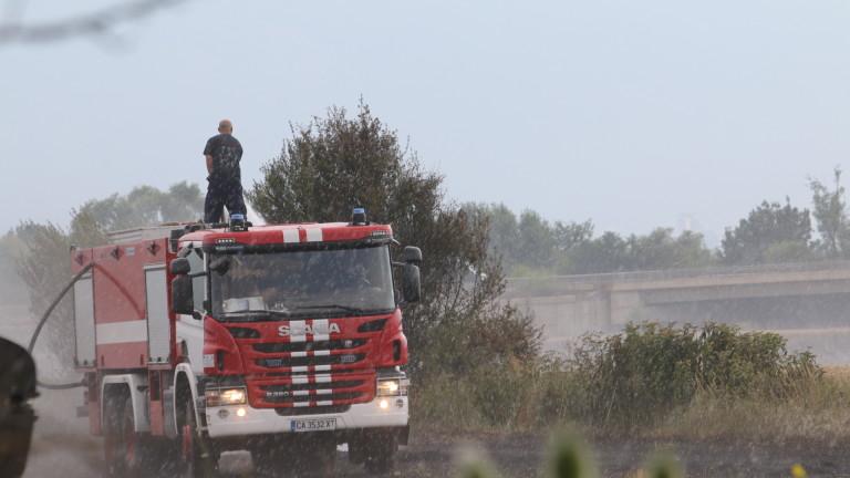 РИОСВ сезира прокуратурата за палеж на защитени територии край Дуранкулак