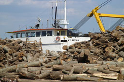30% от дървопреработвателните фирми спират работа