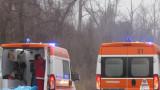 Двама шофьори с челен сблъсък на пътя Руса - Бяла