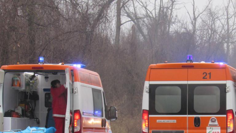 """Трима мъже и бебе пострадаха при катастрофа на АМ """"Хемус"""" до Девня"""