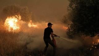 ЕС изпраща помощ на Гърция за борба с горските пожари