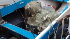 """Заловиха две групи бракониери на риба на язовир """"Огоста"""""""