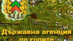 Инж. Тони Кръстев е новият директор на Агенцията по горите