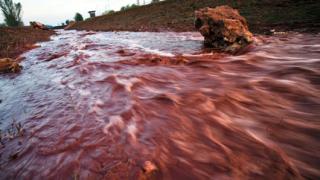Поредна жертва на токсичния разлив в Унгария