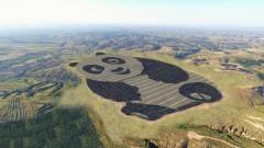 Китай построи слънчева електроцентрала във формата на голяма панда