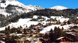 Откриха останките на двойка, изчезнала в Швейцарските Алпи преди 75 г.