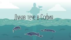 Дунав се пренася в София