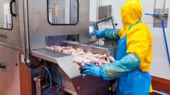 """Производителят на птиче месо """"Градус"""" прави най-големия борсов дебют от кризата насам"""