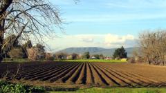 В ЕС се споразумяха да се намалят субсидиите за големите ферми
