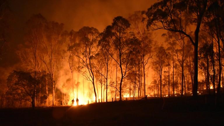 Пожар бушува край село Славе до Сандански, съобщи bTV. Горят