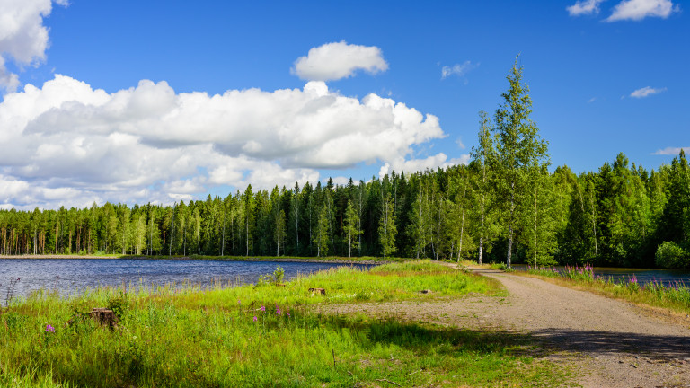 В Северна Русия до финландската граница археологически разкопки от патриотична