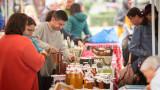 Пчелари от Врачанско алармират за 30% по-ниски добиви тази година
