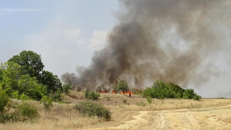 Над 12 са пожарите във вторник, 3 август 2021 г.,