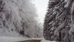 АПИ: Времето е студено. Републиканските пътища са проходими