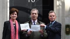 Даян Джеймс напуска лидерския пост на британската Партия на независимостта