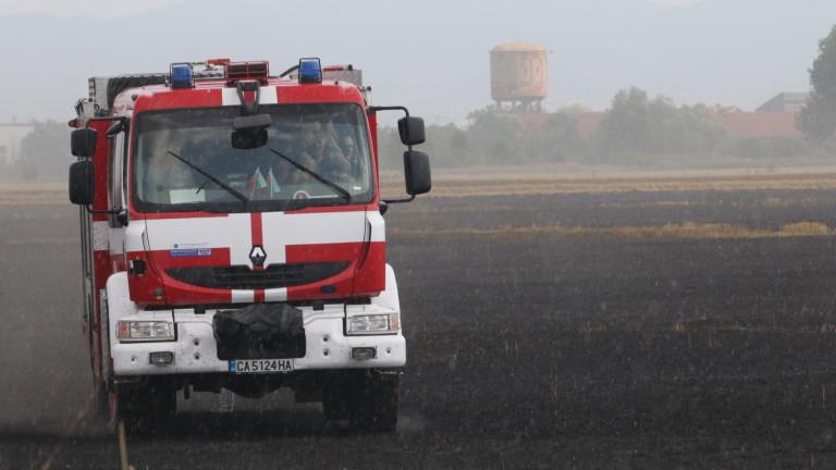 Снимка: Голям горски пожар бушува в Хасковско