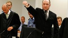 21 години затвор за Андерш Брайвик